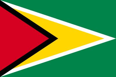 ガイアナ共和国の国旗